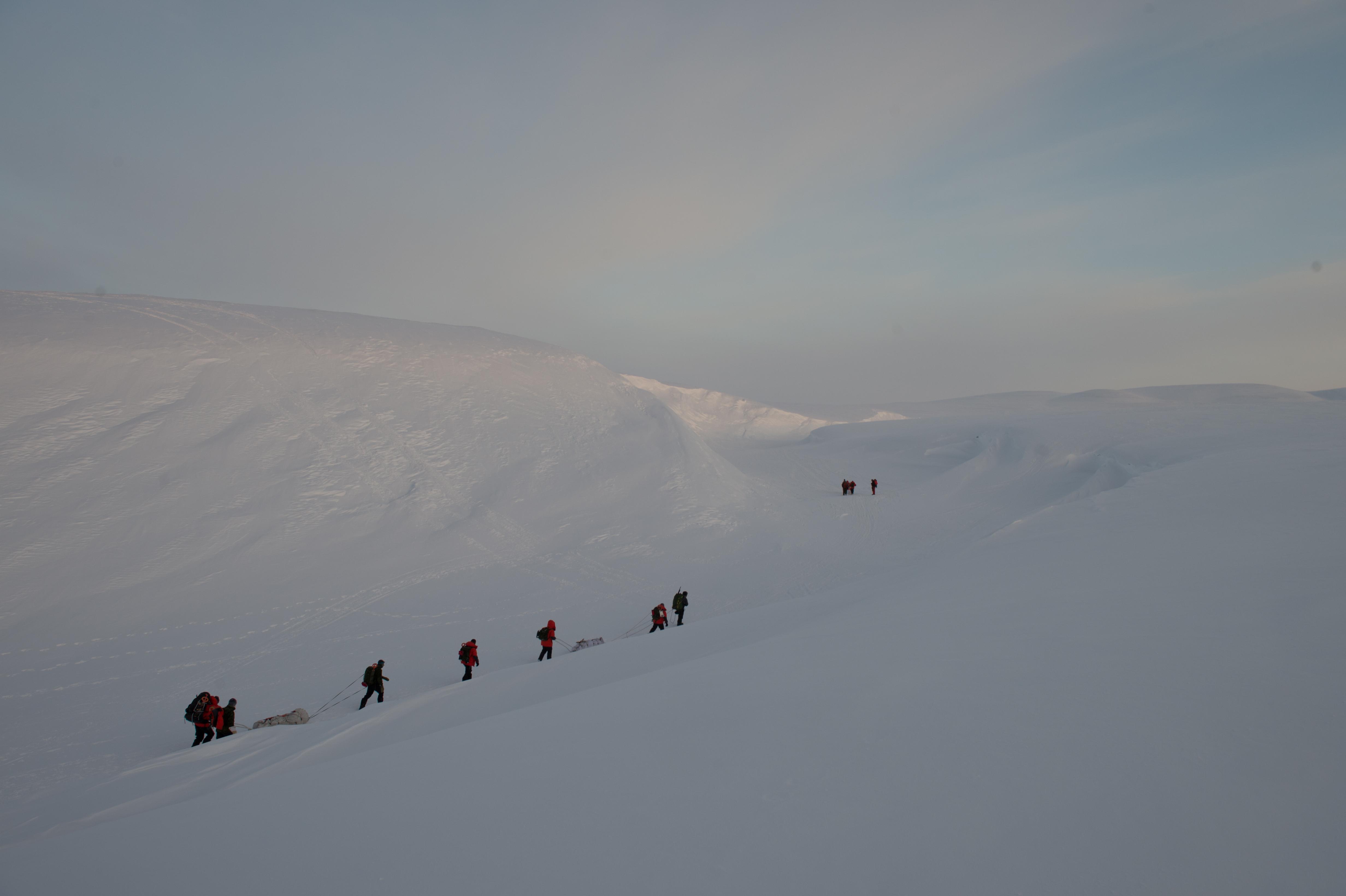 arctic walk